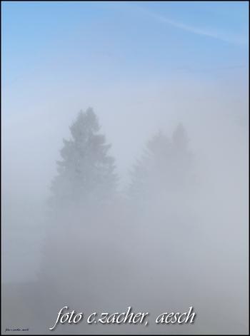 Nebelbild mit Rand