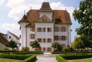 Schloss_Aesch_von_Osten_mit_Springbrunnen_wiki